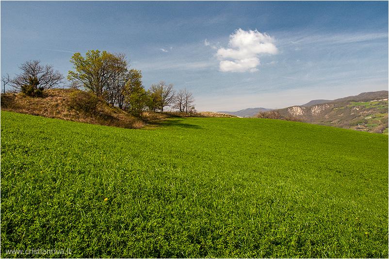 Pietra Parcellara e Pietra Perduca: immensi prati verdi