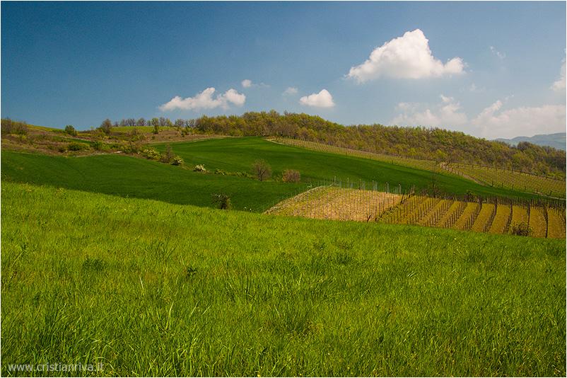 Pietra Parcellara e Pietra Perduca: le colline piacentine
