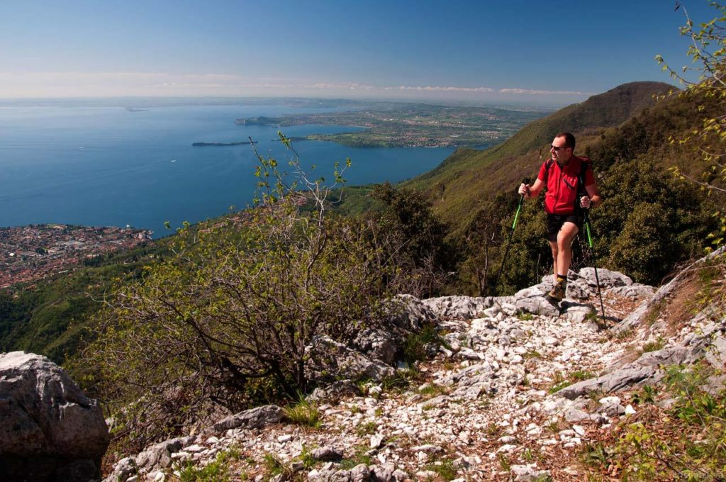 Monte Pizzoccolo dalla Cresta Sud: panorama