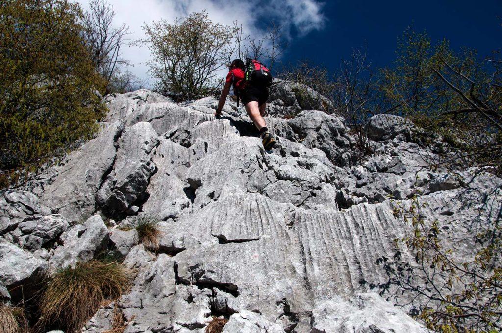 Monte Pizzoccolo dalla Cresta Sud: facili roccette