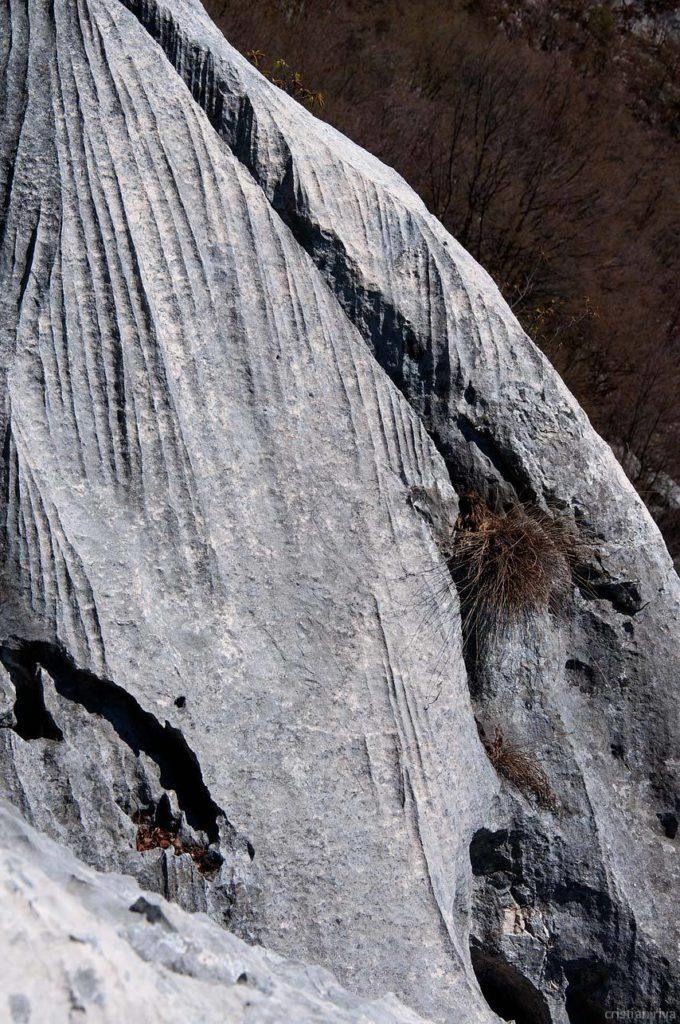 Monte Pizzoccolo dalla Cresta Sud: erosioni nella roccia