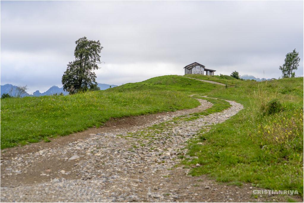 Monta Ario