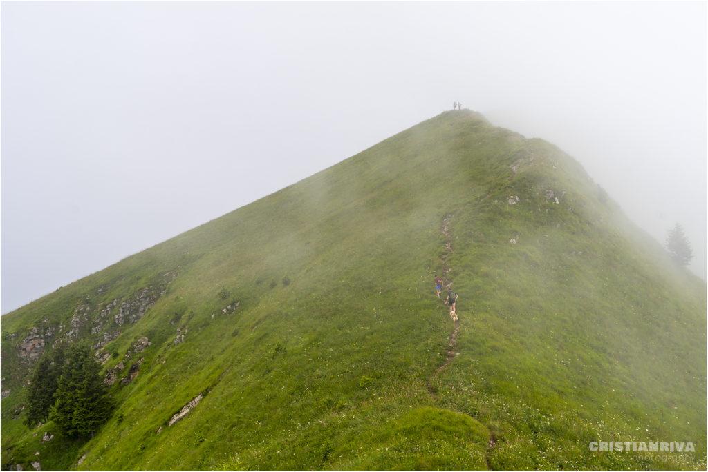 Monte Ario