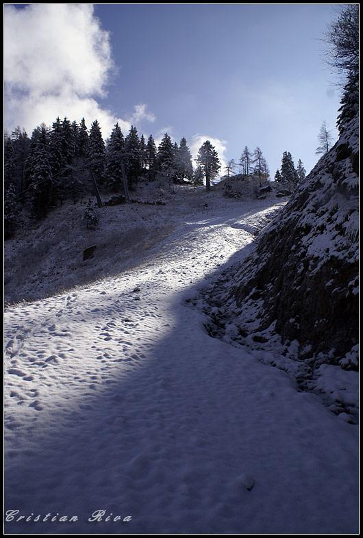 Ciaspolata sul monte Scanapà